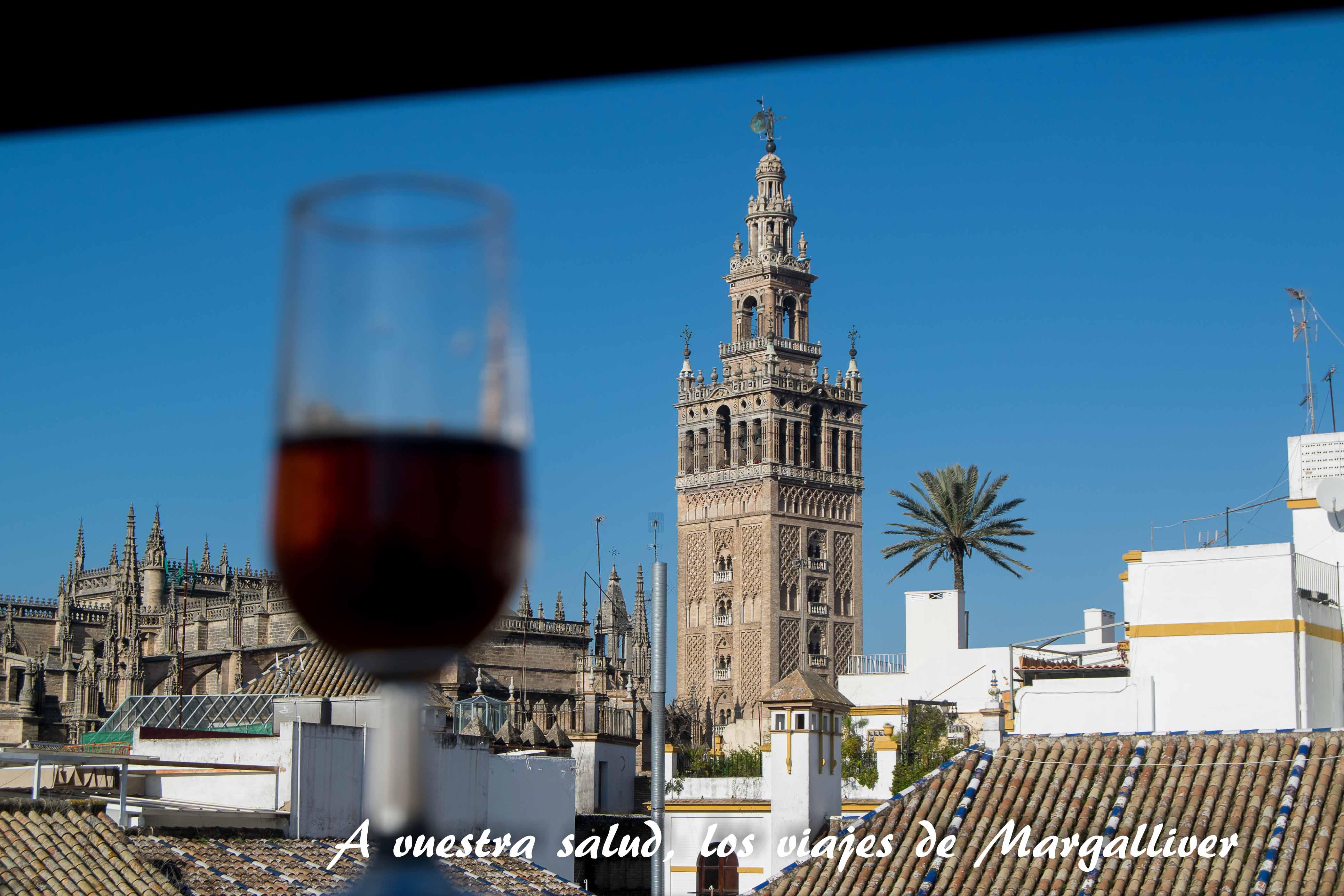 Tomando un vino en la azotea de la casa-museo Amalio - Los viajes de margalliver